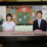 NHKでの解説の様子